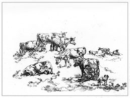 JULIUS IBBETSON, Leeds 1759 – 1817 Masham. Etchings of Cattle. Set of six, 1816. These etchings are for sale, priced £200